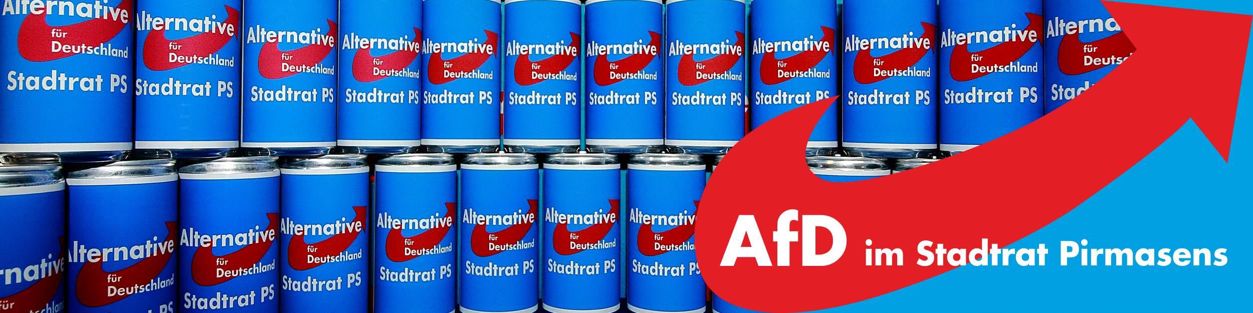 AfD im Stadtrat  Pirmasens